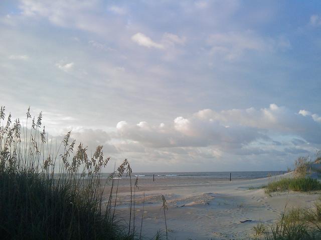 Folly Beach Recognized Among Best Beaches On East Coast Usa
