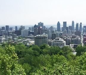 BLOG Montreal